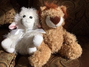 Lions and Lambs provide soothing music and messages of hope and comfort to child victims of trauma